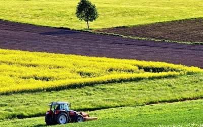 Нардепы обратились в КС для отмены моратория на продажу земли