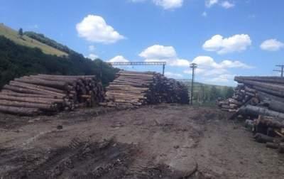 Рада отменила мораторий на экспорт дров