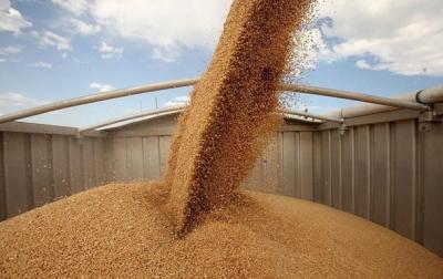 Украинские аграрии экспортировали 23 миллиона тонн зерновых